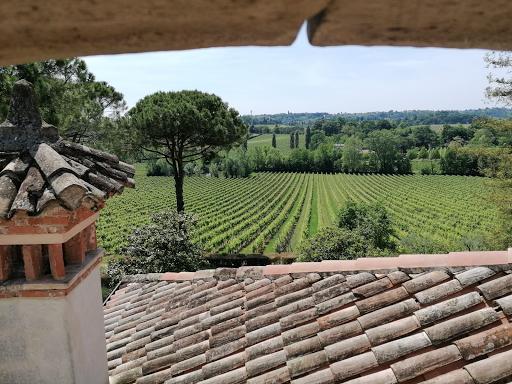 Fra storia e leggenda, i vini della famiglia Dalla Libera