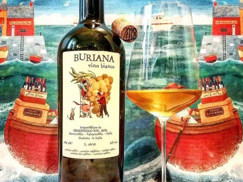 Antonella Pianca racconta i vini naturali di Jacopo Stigliano, della Valsamoggia (BO)